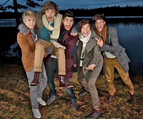 Gli One Direction arrivano in Italia nel 2013 con due tappe del loro Tour